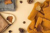 Top view photo of yellow sweater grey knitted scarf leather handbag autumn brown leafage anise and pine cones on isolated light beige background