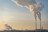 Environmental pollution. Global warming. Climate change.