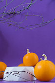 Halloween holiday concept. Podiums or pedestals for displaying products, leafless tree branches, orange autumn pumpkins on a purple background.