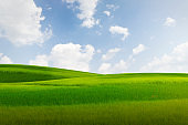 grassland at hill and blue sky nature background
