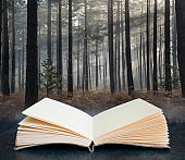 Digital composite image of Pine forest Autumn Fall landscape foggy morning coming out of pages in book
