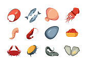 Seafood colored. Ocean delicious natural products marine fish squids oysters sliced crab garish exotic seafood vector pictures