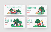 Garden Harvest Landing Page Template Set. Characters Harvesting Apples in Orchard, Gardeners Collect Fruit Crop on Farm