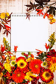 Autumnal flowers and berries on vintage wooden background
