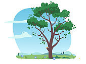 Early summer or spring tree plant on green grass meadow with blooming flowers. Tree with growing foliage leaves on branches. Nature environment, botany, summer season weather flat vector illustration