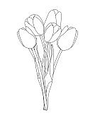 Bouquet of spring flowers tulips isolated on white background Vector Illustration EPS10