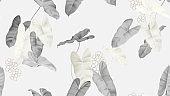 Foliage seamless pattern, grey Philodendron burle marx plant on light grey
