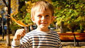 Portrait of smiling little boy holding autumn tree leaf and looking in camera