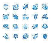 Forest berries flat line icons - blueberry, cranberry, raspberry, strawberry, cherry, rowan. Watermelon, grapes, olives illustrations for natural food store. Blue color, Editable Stroke