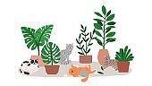 Cat relaxing near home plants