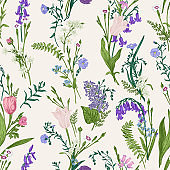 Seamless botanical pattern.  Floral background.