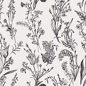 Seamless botanical pattern. Black and white.
