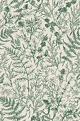 Botanical seamless hand-drawn pattern.