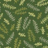 Rosemary Kitchen Herb Garden Vector Illustration Seamless Pattern