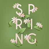 Floral Spring Graphic Design - with Daisy Flowers.