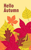Hello Autumn. Fall season vector background with fallen leaves.