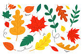 Set of hand drawn fall leaves. Flat style autumn design elements isolated on white background.