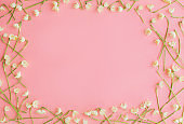 Flowers frame flat lay on pink paper. Stylish floral greeting card, space for text. Hello spring