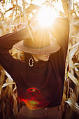 Portrait of stylish woman in hat and brown clothes posing in autumn maize field in sunset sunlight. Fashionable attractive young female  standing in autumnal corn in evening countryside