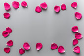 Group of red rose petals on gray background