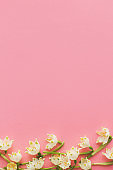 Flowers border flat lay on pink paper. Stylish floral greeting card with space for text. Spring
