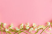 Spring flowers border flat lay on pink paper. Stylish floral greeting card with space for text