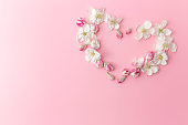 Flat lay on pink background with apple blossom heart shape ornament border