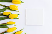Flat lay, yellow tulips on white background, empty frame. Greeting card concept