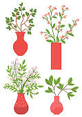 Houseplant in Vases, Flowers with Flourishing