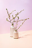 Spring blooming branches in vases, front view
