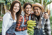 Multiracial senior women working at garden while holding a banana bunch - Main focus on center woman face
