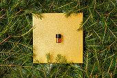 Tester aroma oil pine needles spruce.