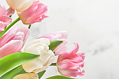 Pink and white tulips on white background. Floral pattern. Greeting card. Mock up. Space for text.