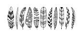 Rustic decorative feathers vector collection.