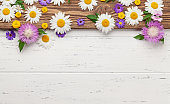 Various colorful garden flowers over wooden background