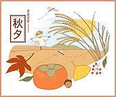 Korean autumn Thanksgiving rice paddy landscape. And autumn nature elements.