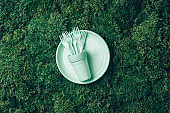 Pastel plastic tableware on green grass, moss background. Top view. Copy space. Environmental pollution. Ban single use plastic. Disposable plastic tableware - plastic plates, forks, spoons, knives
