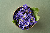 Wood violet flowers in a bowl on green background