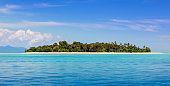 Tropical island with coconut palm. Beach fun.
