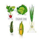 Organic food banner template design