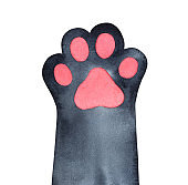 Cute black paw with pink little pad. Symbol of cosiness, home, warmth, good fortune. Handdrawn water color graphic painting, cut out clip art element for creative design, print, poster, frame, banner.