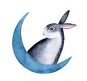 Watercolor sketchy drawing of little adorable bunny sitting on navy blue moon. Handdrawn water color stylized illustration on white background, cut out clipart detail for creative design decoration.