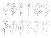 vector single one line drawn set of flowers.  flower handdrawing outline illustration isolated on white background. Botanical