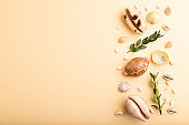 Composition of seashells, green boxwood branch. mockup on orange background. Blank, top view, still life, flat lay, copy space. travel concept.