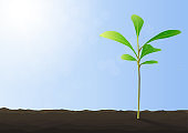 Green sprout growing from ground on blue background vector illustration