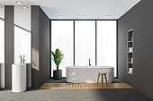 Bathroom interior with bathtub on concrete floor with plant and sink