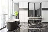 Dark bathtub and sinks with mirrors, city view
