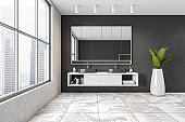 Black and white bathroom, two sinks with mirror near window and plant