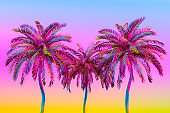 Palm Tree Color Gradient, Multi Colored Minimal Summer Concept