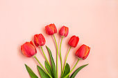 Bouquet of red spring tulips on pink background